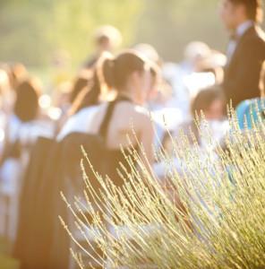 wedding,matrimonio,planner,milano,italia,TheWhiteRose