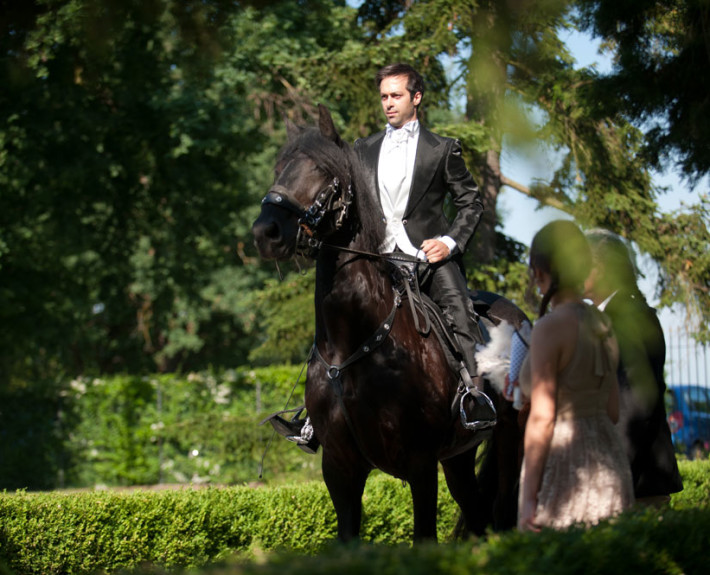 Effetto Sorpresa Cavallo, The White Rose Wedding Planner Milano