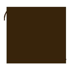 Logo-sintesi-the-White-rose