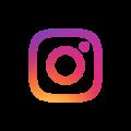 Icona instagram the white rose